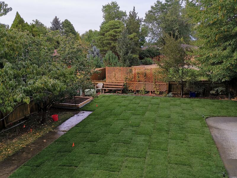 Large backyard with sod installed